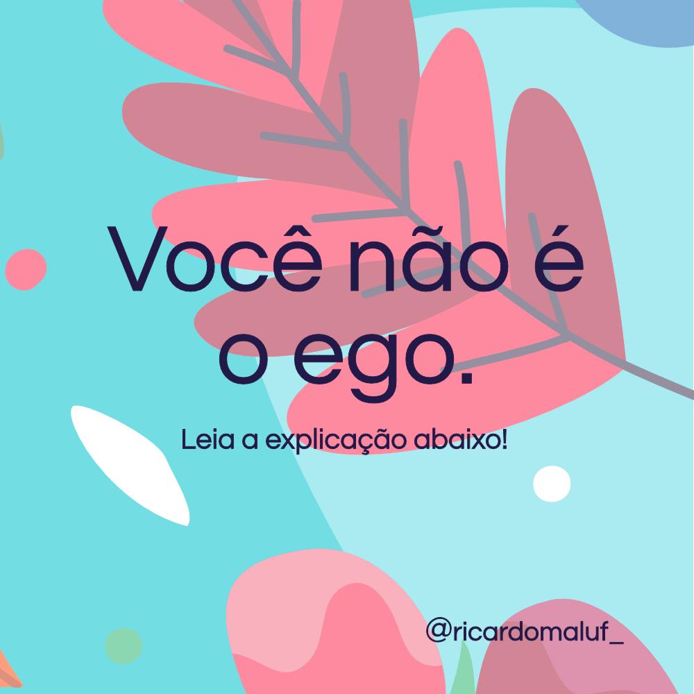 Voce Nao E O Ego
